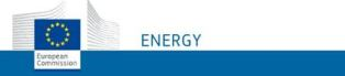 European Commission - Directorate General for Energy (DG ENER)